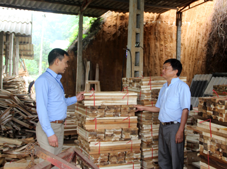 Mô hình chế biến gỗ rừng trồng của gia đình anh Nguyễn Đức Toàn cho hiệu quả cao.