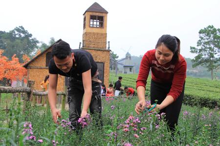Vợ chồng chị Nguyễn Minh Hiền và anh Nguyễn Thành Trung chăm sóc vườn hoa tại phim trường.