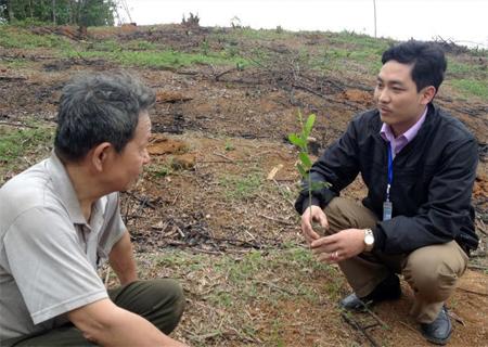 Lãnh đạo xã Cảm Ân trao đổi với nông dân về kỹ thuật trồng rừng.