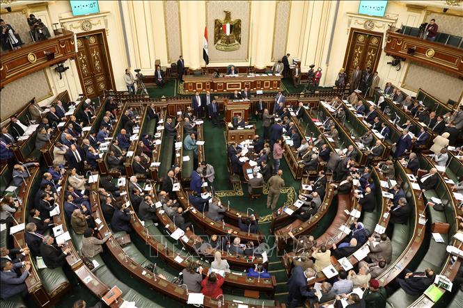 Toàn cảnh phiên họp Quốc hội Ai Cập về sửa đổi Hiến pháp ở thủ đô Cairo ngày 16/4/2019.