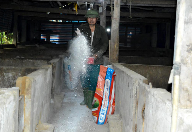 Người dân xã Hồng Ca rắc vôi bột, tăng cường vệ sinh chuồng trại để phòng chống bệnh dịch tả lợn châu Phi.