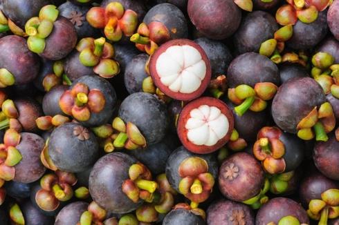 Trước măng cụt, đã có 8 loại trái cây Việt Nam được phía Trung Quốc nhập khẩu chính ngạch là: Thanh long, dưa hấu, chôm chôm, xoài, nhãn, vải, chuối và mít.