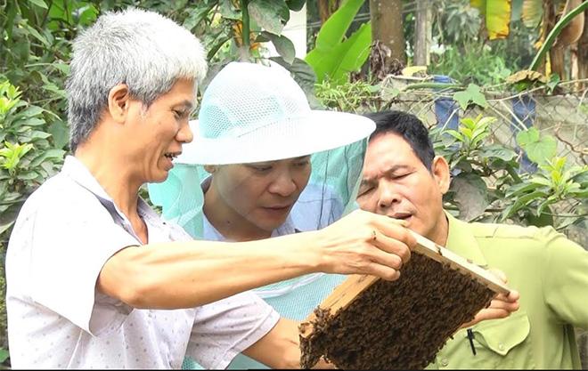 Nông dân xã Báo Đáp trao đổi kinh nghiệm nuôi ong mật.