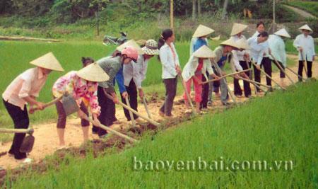 Người dân xã Ngọc Chấn (huyện Yên Bình) làm đường giao thông nông thôn.