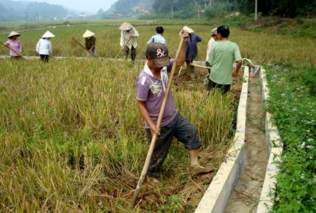 Tiêu chí Thủy lợi trong xây dựng nông thôn mới được người dân tích cực tham gia. Ảnh MQ