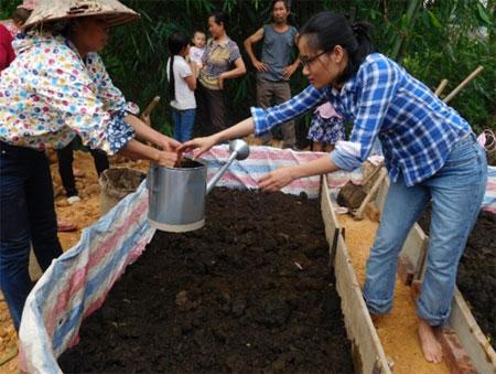 Cán bộ Trung tâm Nghiên cứu Nông nghiệp Nhiệt đới quốc tếCIAT hướng dân người dân nuôi giun quế.
