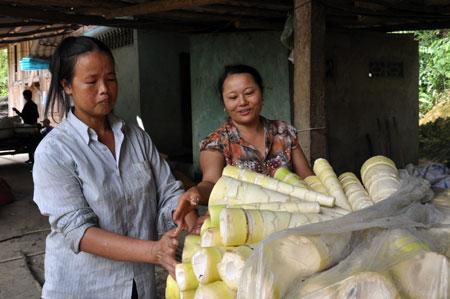 Người dân xã Kiên Thành (Trấn Yên) thu nhập cao từ trồng tre măng Bát độ.
