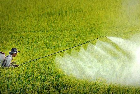 Loại chất gây ung thư khỏi danh mục thuốc bảo vệ thực vật.