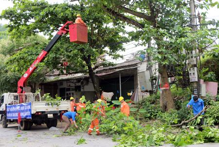 Công nhân Điện lực Yên Bình chặt tỉa cây cối trong và ngoài hành lang lưới điện, bảo đảm hệ thống điện luôn an toàn trong mùa mưa bão.