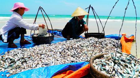 Bộ Y tế tuyên bố thủy sản 4 tỉnh miền Trung đã an toàn.