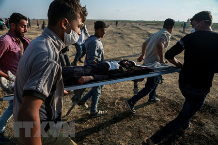Chuyển người biểu tình Palestine bị thương trong xung đột với binh sỹ Israel tại khu vực biên giới Dải Gaza với Israel ngày 15/5.