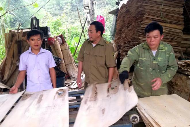 Anh Nguyễn Văn Tùng (áo trắng) - kiểm tra chất lượng sản phẩm ván bóc.