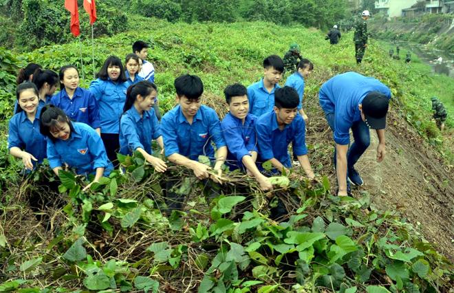 Đoàn viên thanh niên thành phố Yên Bái chung tay bảo vệ môi trường trong Ngày Chủ nhật xanh.