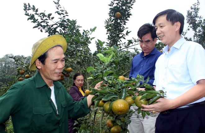 Đồng chí Hoàng Hữu Độ - Bí thư Huyện ủy Lục Yên thăm mô hình nông dân sản xuất giỏi xã Khánh Hòa.