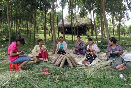 Nghề đan rọ tôm ở thôn Đồng Tý xã Phúc An (Yên Bình).