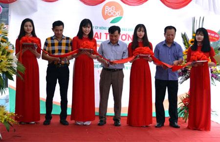 Đại diện lãnh đạo Sở Nông nghiệp và phát triển nông thôn cùng Công ty cắt băng khai trương cửa hàng thwucj phẩm sạch của Công ty cổ phần Nông sản sạch B&G Việt Nam