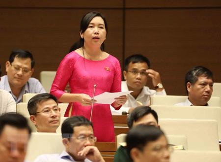 Đại biểu Quốc hội tỉnh Bình Định Lý Tiết Hạnh phát biểu.