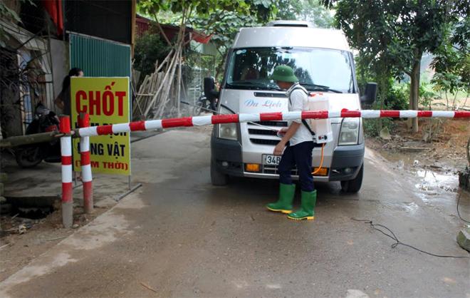 Chốt kiểm dịch động vật tạm thời đặt tại tổ 5, phường Hợp Minh.
