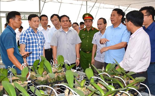 Đoàn công tác của Văn phòng Điều phối NTM Trung ương khảo sát mô hình trồng lan hồ điệp tại xã Minh Bảo, thành phố Yên Bái.