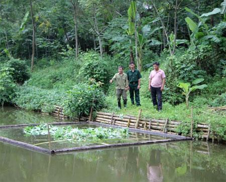 Cựu chiến binh Nguyễn Đức Thắng (bên trái) ở xã Đại Đồng, huyện Yên Bình là một trong những tấm gương điển hình về làm kinh tế giỏi.