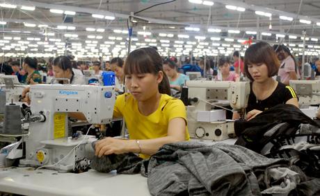 Số lao động được tạo việc làm trong các Công ty may đóng trên địa bàn tỉnh đến tháng 6 năm 2018 là trên 3.560 người.