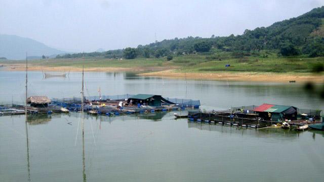 Khu vực nuôi cá lồng trên hồ Thác Bà của người dân xã Mỹ Gia.