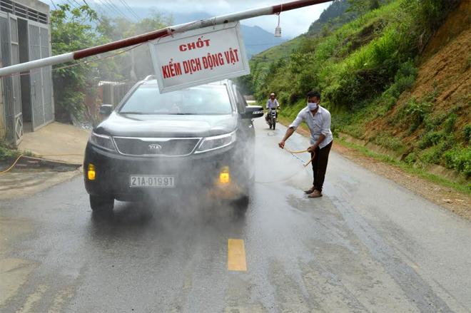 Chốt kiểm dịch động vật tạm thời tại xã Cao Phạ duy trì trực 24/24 giờ để kiểm soát, phun tiêu độc khử trùng các phương tiện giao thông qua địa bàn.