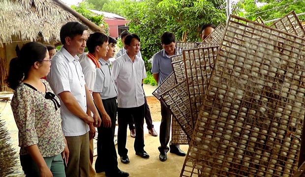 Lãnh đạo huyện Trấn Yên tham quan mô hình né tằm gỗ ô vuông ở Việt Thành