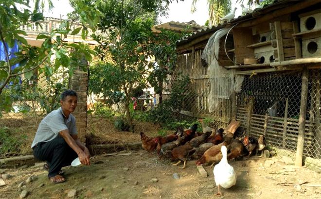 Cựu chiến binh Trần Thanh Nhàn trong cuộc sống lao động, sản xuất hàng ngày.