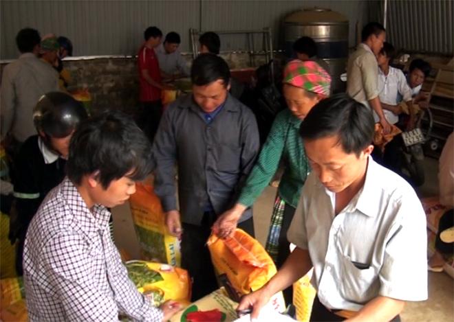 Người dân huyện Trạm Tấu nhận giống từ nguồn vốn chính sách dân tộc.