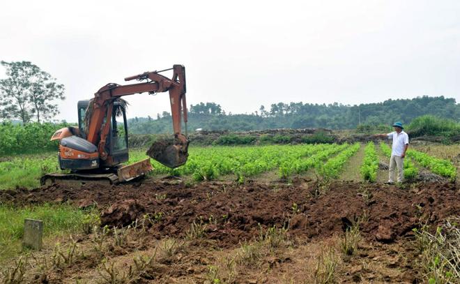 Trưởng thôn Trần Văn Toản trông coi công việc ở đầm Sen.