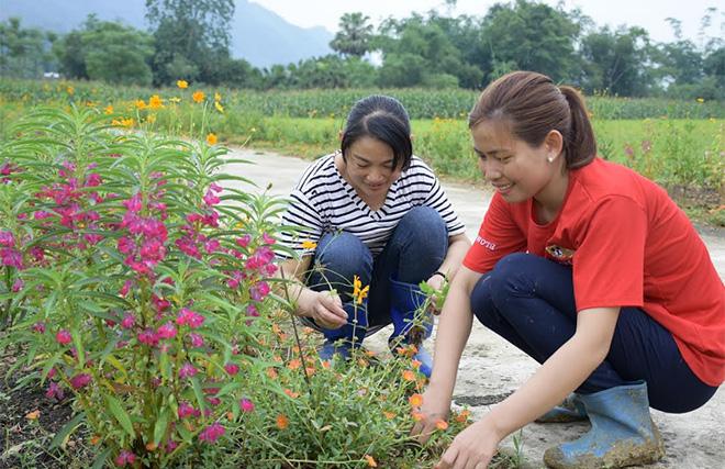 Phụ nữ xã Mai Sơn tích cực chăm sóc các tuyến đường hoa.