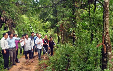 Lãnh đạo xã Kim Nọi cùng lực lượng xung kích đi kiểm tra rừng.
