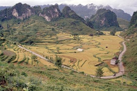 Đèo Mã Phục ở xã Quốc Toản (huyện Trà Lĩnh, Cao Bằng) nằm trên tuyến Quốc lộ 3, nổi tiếng bởi sự hiểm trở và vẻ đẹp thiên nhiên kỹ vỹ.