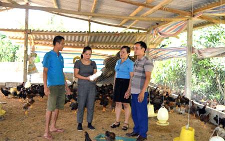 Chị Hoàng Thị Ánh Tuyết hướng dẫn kỹ thuật chăm sóc gà cho gia đình anh Lê Minh Hồng - thôn Tân Việt, xã Quy Mông huyện Trấn Yên.