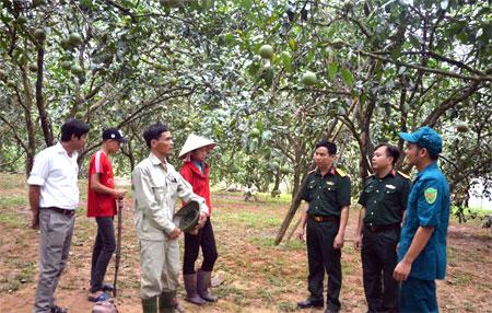 Anh Hoàng Văn Nam (thứ 3, trái sang) trao đổi kinh nghiệm trồng, chăm sóc bưởi.