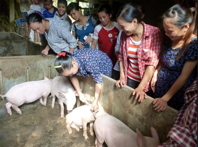 Cán bộ Trung tâm Dịch vụ hỗ trợ phát triển nông nghiệp huyện Văn Yên hướng dẫn người dân cách chăn nuôi lợn.