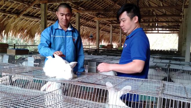 Anh Nịnh Văn Bản (bên trái) chia sẻ kinh nghiệm nuôi thỏ với đoàn viên trong Chi đoàn thôn Cây Mỡ.