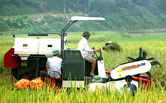 Nông dân Văn Yên đưa cơ giới hóa vào sản xuất.