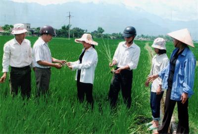 Lãnh đạo Đảng ủy,UBND phường Cầu Thia, kiểm tra diện tích áp dụng thâm canh phân viên dúi sâu.