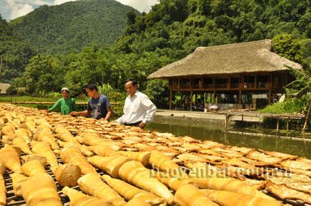 Măng mai khô đem lại giá trị kinh tế cao cho người dân Lâm Thượng.