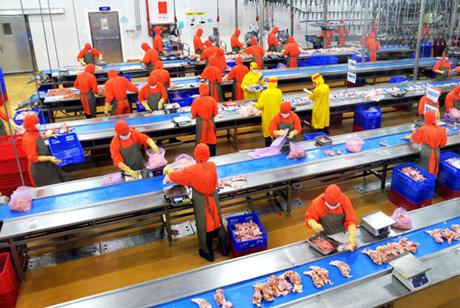 Dây chuyền sản xuất xúc xích tại Công ty cổ phần Chăn nuôi C.P Việt Nam.