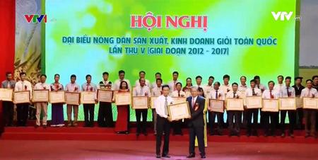Phó Thủ tướng thường trực Trương Hòa Bình tặng bằng khen cho các nông dân sản xuất kinh doanh giỏi.