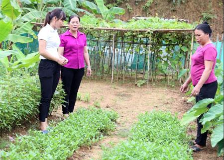 Chị Sùng Thị Vùa bên trang trại nuôi giống gà đen bản địa.