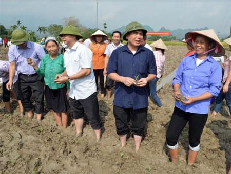 Đồng chí Nông Văn Lịnh  - Chủ tịch Ủy ban Mặt trận Tổ quốc tỉnh cùng Giám đốc Sở Nông nghiệp và Phát triển nông thôn xuống đồng trồng ngô cùng người dân.