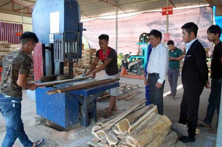 Người dân xã Phú Thịnh tích cực phát triển kinh tế.