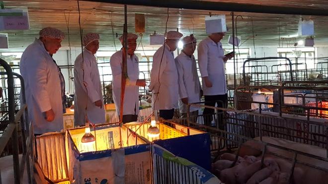 Đoàn công tác của Viện Chăn nuôi lợn, Cộng hòa Ukraina thăm trang trại lợn của Công ty TNHH Đầm Mỏ tháng 3/2018.