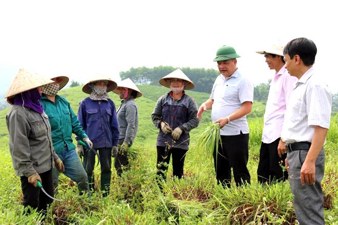 Lãnh đạo xã Đông Cuông động viên nông dân trong xã tham gia mô hình liên kết với doanh nghiệp trồng sả để nâng cao thu nhập, cải thiện đời sống.