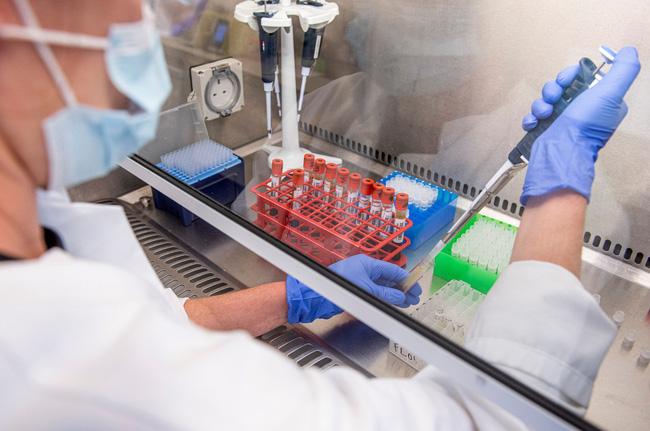 Vaccine COVID-19 của Ấn Độ có thể sẵn sàng vào quý I/2021.