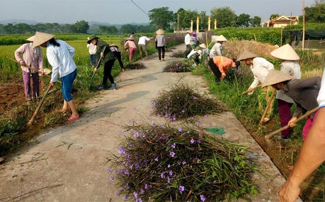 """Toàn huyện đã thành lập và duy trì 190 đoạn đường phụ nữ tự quản bảo vệ môi trường xanh, sạch, đẹp; 56 mô hình chi hội phụ nữ """"5 không 3 sạch""""; xây dựng 650 tuyến đường hoa..."""